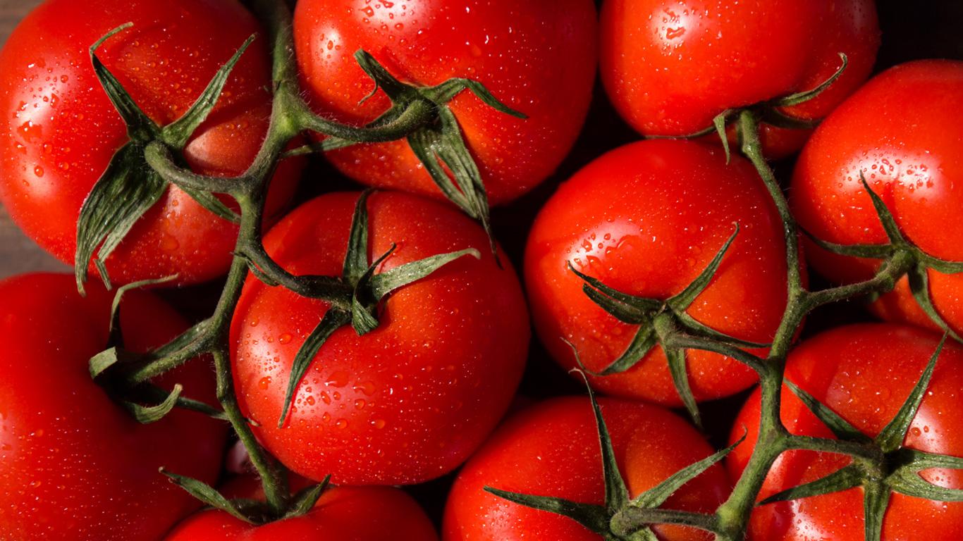 Obst und Gemüse: So lagern Sie Tomaten, Karotten und Zitrusfrüchte richtig
